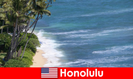 Scopri le principali attrazioni di Honolulu con le famiglie