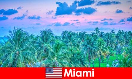 Miami natura mozzafiato con grande natura selvaggia tropicale