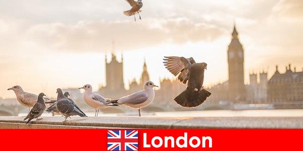 Luoghi da visitare a Londra per i visitatori internazionali di origine straniera