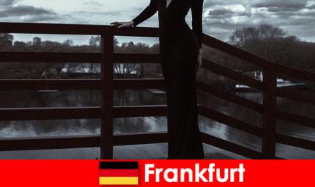 Sensuali manager escort a Francoforte sul Meno coccolano i loro clienti dalla testa ai piedi