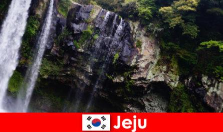 Jeju in Corea del Sud, l'isola vulcanica subtropicale con foreste mozzafiato per gli stranieri