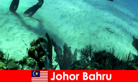 Attività avventurose a Johor Bahru Immersioni, arrampicate, escursioni e molto altro
