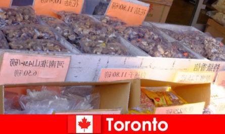Toronto e la sua gastronomia particolarmente diversificata non lasciano i viaggiatori affamati