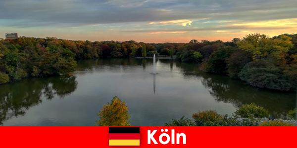 Viaggio nella natura attraverso foreste, montagne e laghi nei parchi naturali di Colonia, Germania