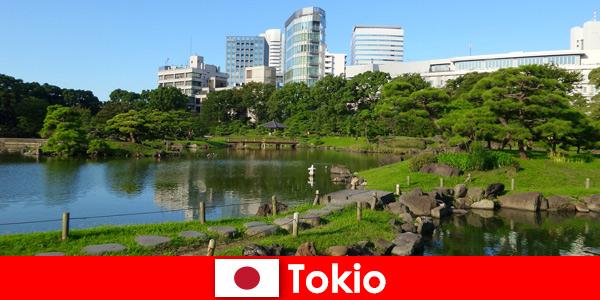 I turisti si godono da vicino le vecchie e le nuove tradizioni a Tokyo in Giappone