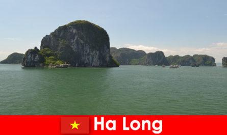 Gite in barca per i vacanzieri ai giganti del rock in Ha Long Vietnam