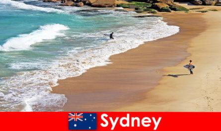 I turisti del surf si godono il massimo a Sydney in Australia