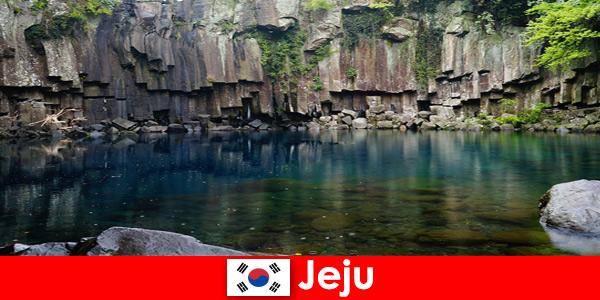 Viaggio esotico a lunga distanza nel bellissimo paesaggio vulcanico di Jeju in Corea del Sud