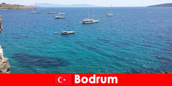 Vacanza di lusso per stranieri nelle splendide baie di Bodrum Turchia