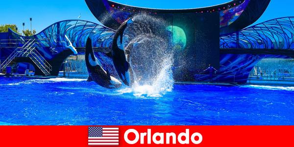 Prenota viaggi individuali per stranieri a Orlando negli Stati Uniti