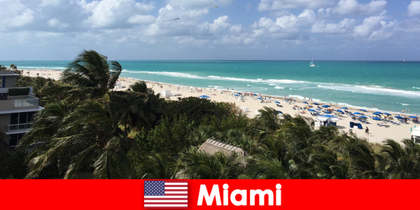 Le onde sabbiose delle palme attendono i vacanzieri a lungo termine nella paradisiaca Miami Stati Uniti