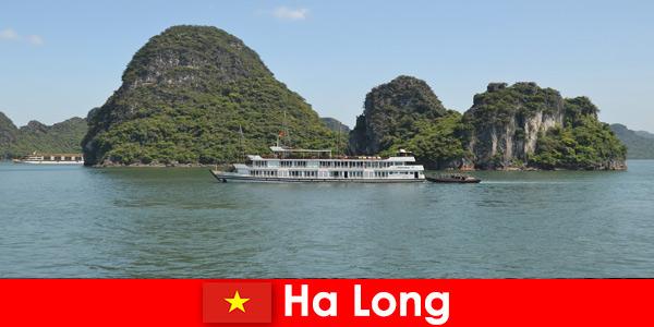 Le crociere di più giorni per gruppi turistici sono molto popolari ad Ha Long Vietnam